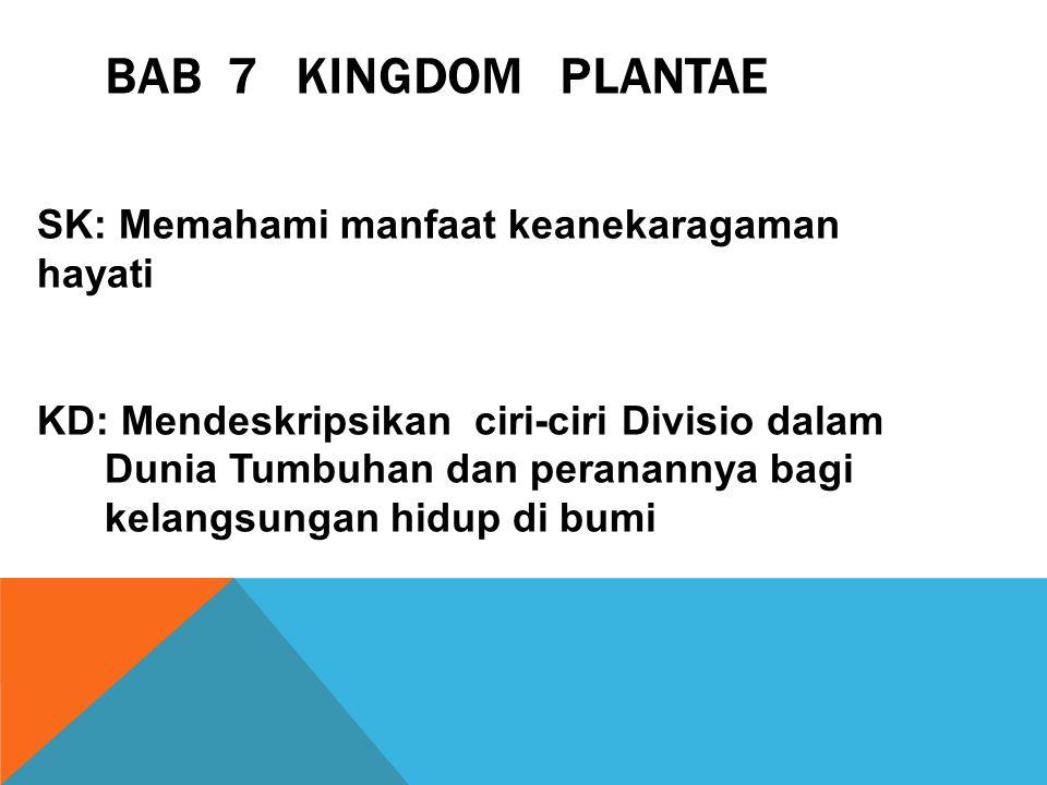 BAB 7 KINGDOM PLANTAE SK: Memahami manfaat keanekaragaman hayati