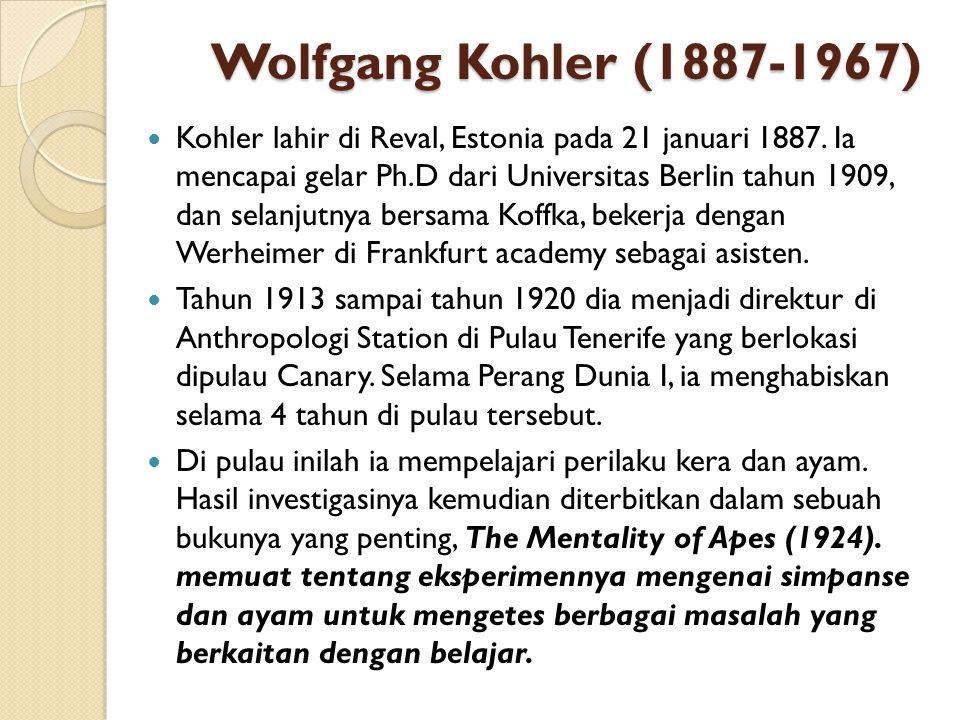 Wolfgang Kohler (1887-1967)