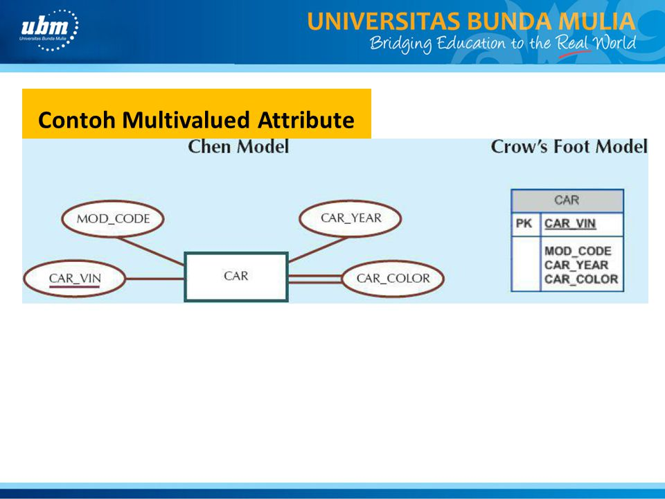 Contoh Multivalued Attribute