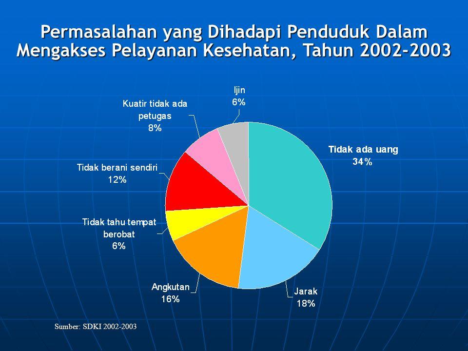Permasalahan yang Dihadapi Penduduk Dalam Mengakses Pelayanan Kesehatan, Tahun 2002-2003