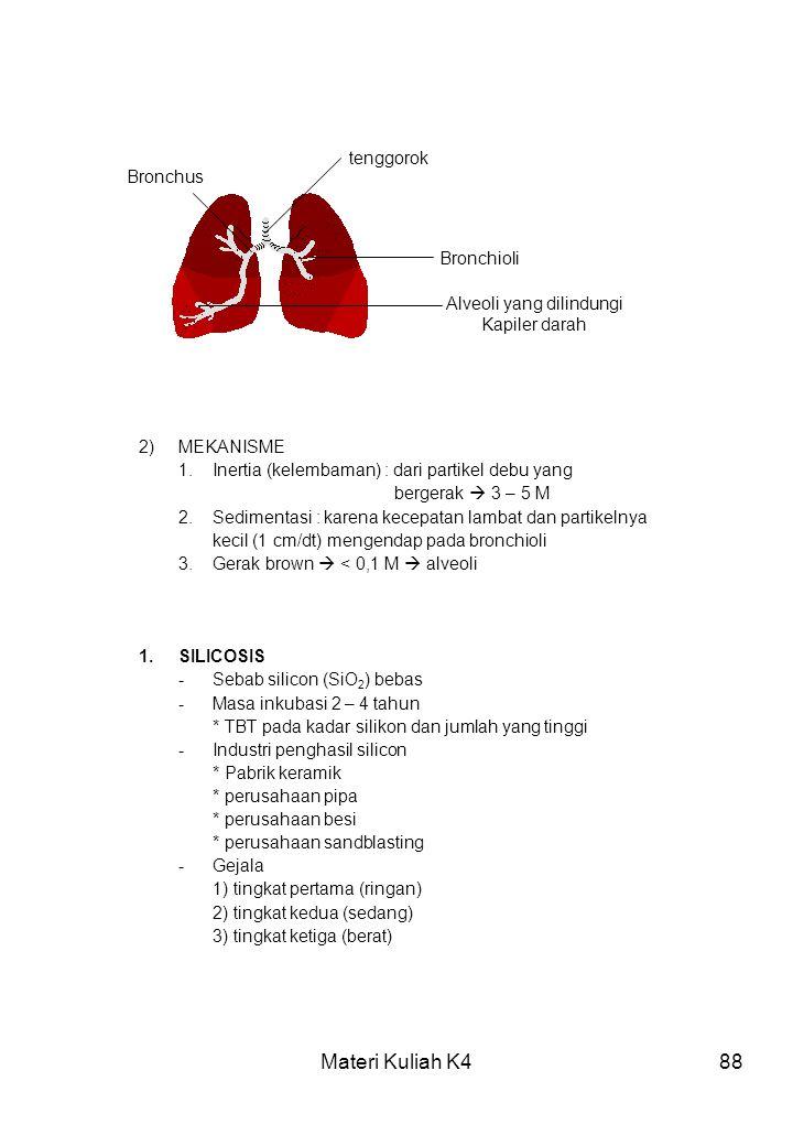 Alveoli yang dilindungi