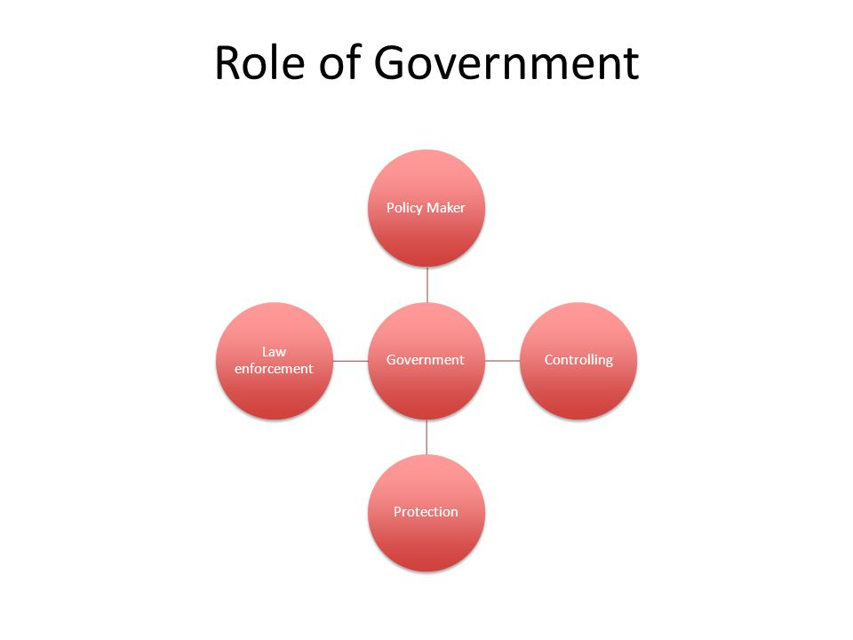 Role of Government Government Policy Maker Controlling Protection