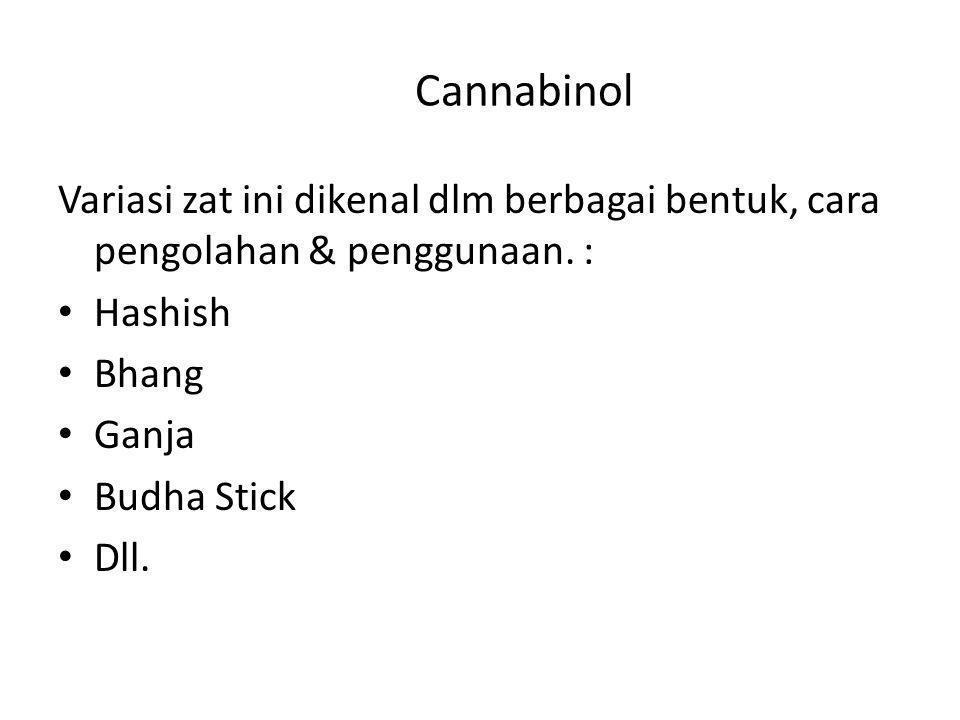 Cannabinol Variasi zat ini dikenal dlm berbagai bentuk, cara pengolahan & penggunaan. : Hashish. Bhang.