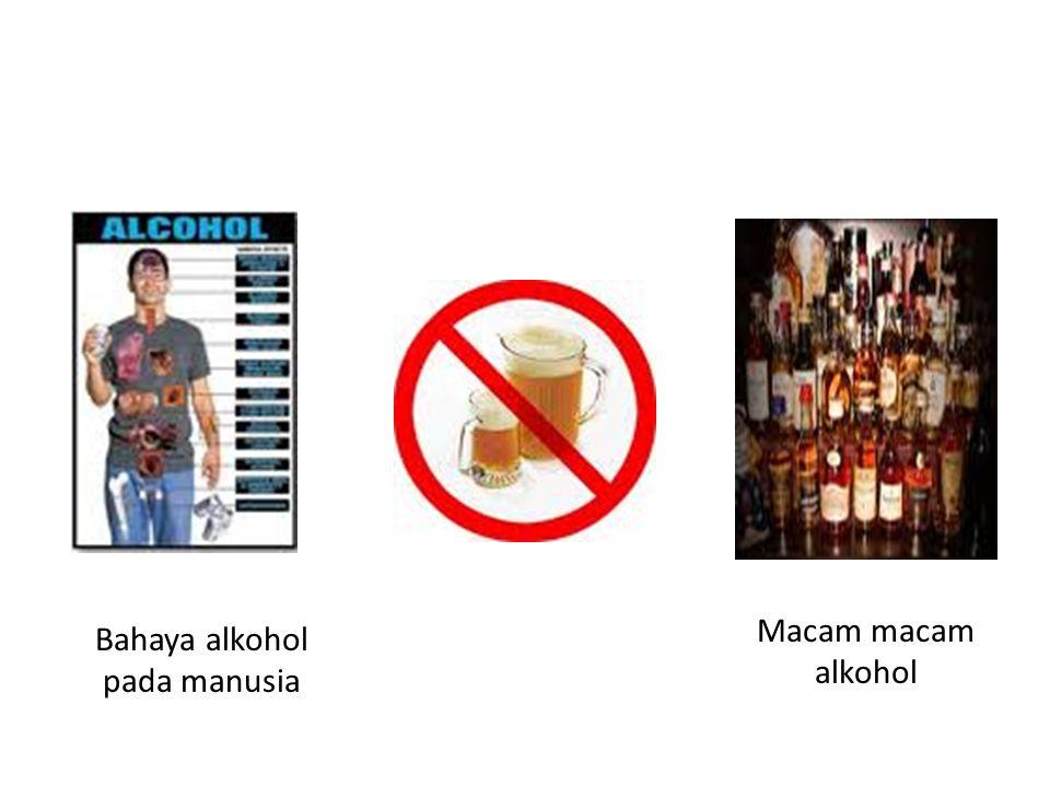 Bahaya alkohol pada manusia