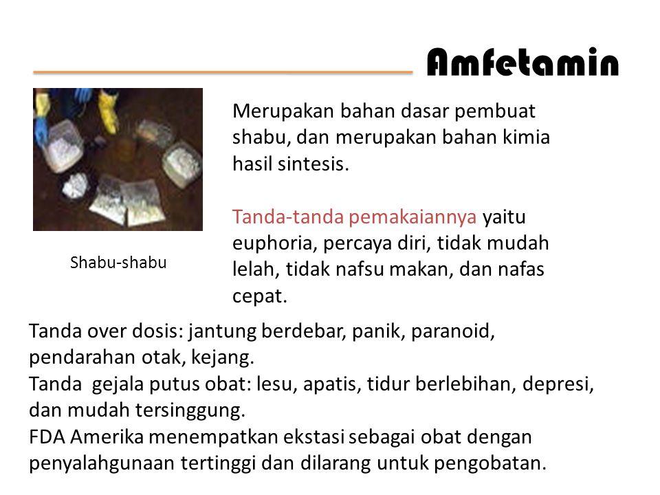 Amfetamin Merupakan bahan dasar pembuat shabu, dan merupakan bahan kimia hasil sintesis.