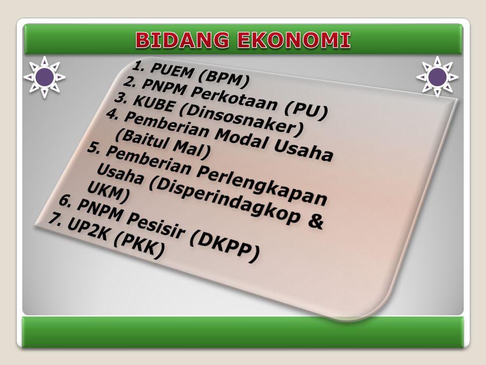 BIDANG EKONOMI PUEM (BPM) PNPM Perkotaan (PU) KUBE (Dinsosnaker)