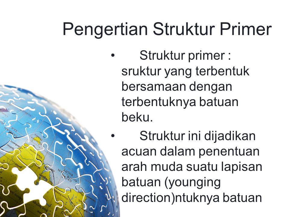Pengertian Struktur Primer