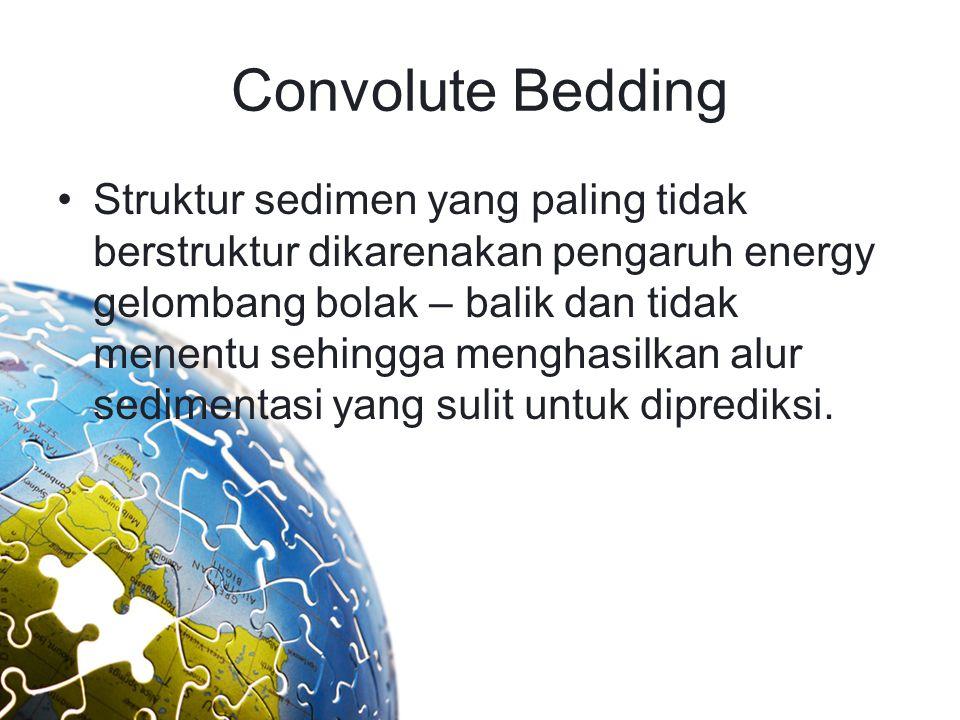 Convolute Bedding
