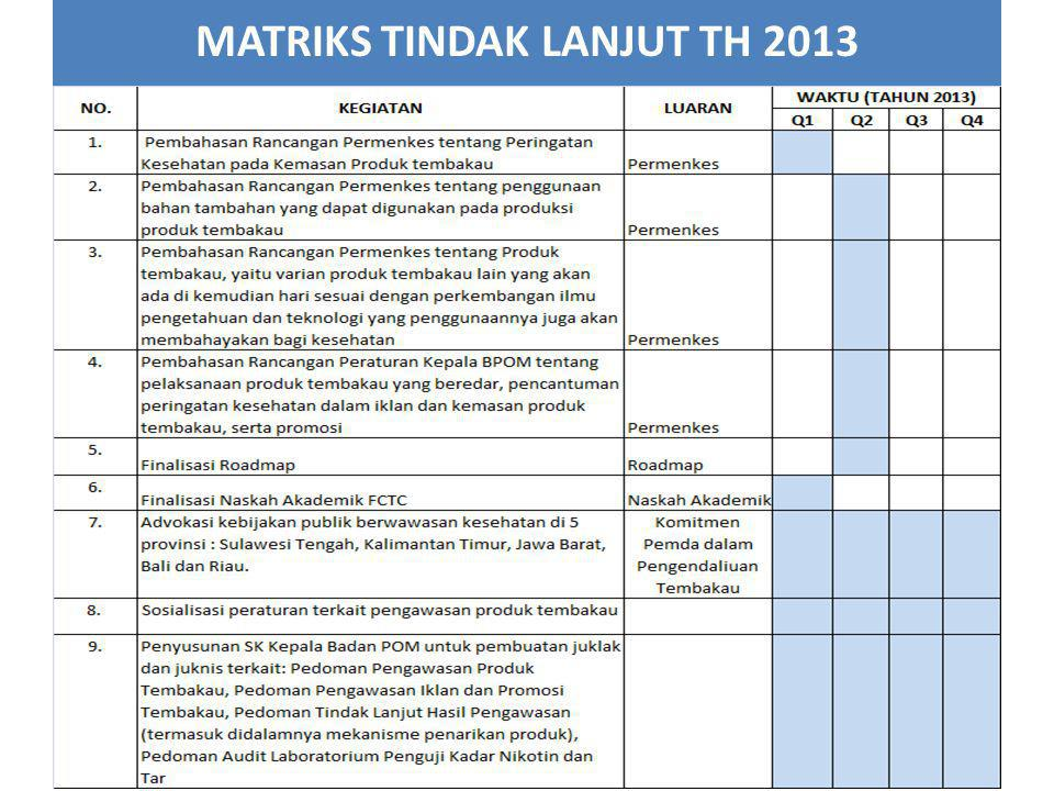 MATRIKS TINDAK LANJUT TH 2013