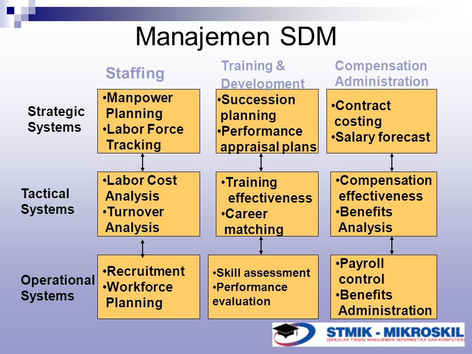 Manajemen SDM Staffing Manpower Planning Labor Force Tracking
