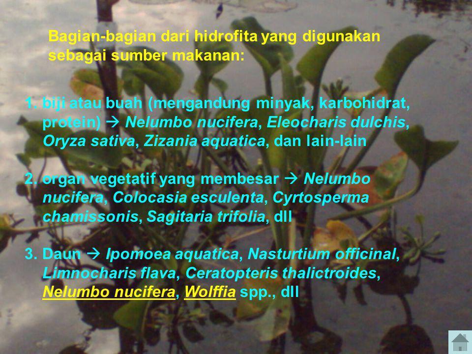Bagian-bagian dari hidrofita yang digunakan sebagai sumber makanan: