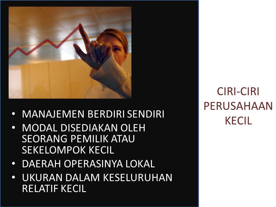 CIRI-CIRI PERUSAHAAN KECIL