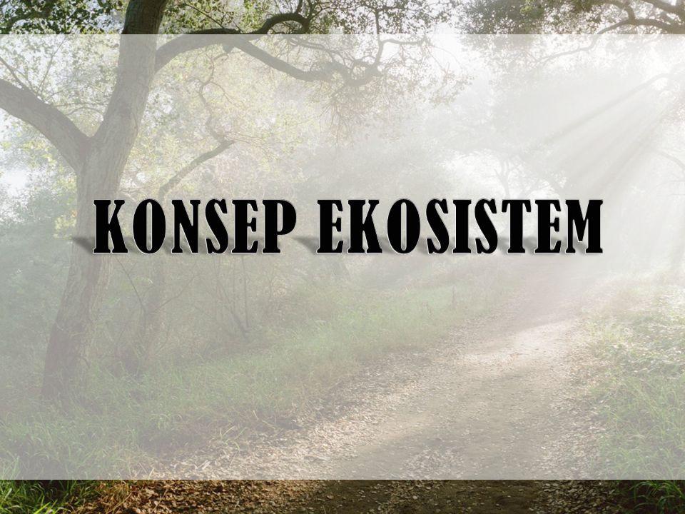 KONSEP EKOSISTEM