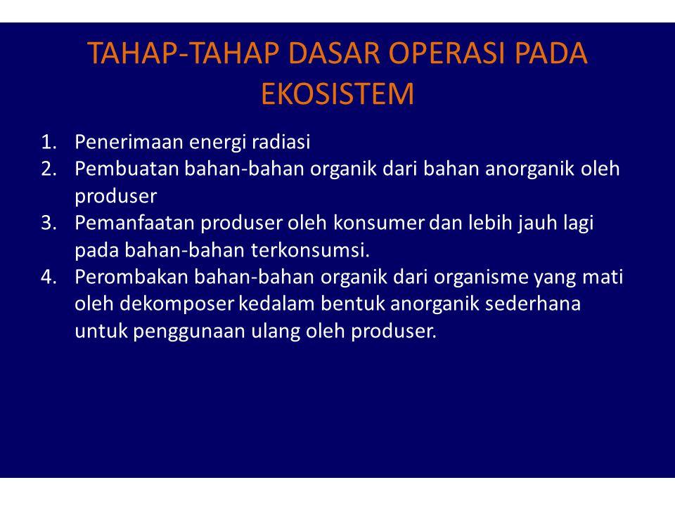 TAHAP-TAHAP DASAR OPERASI PADA EKOSISTEM