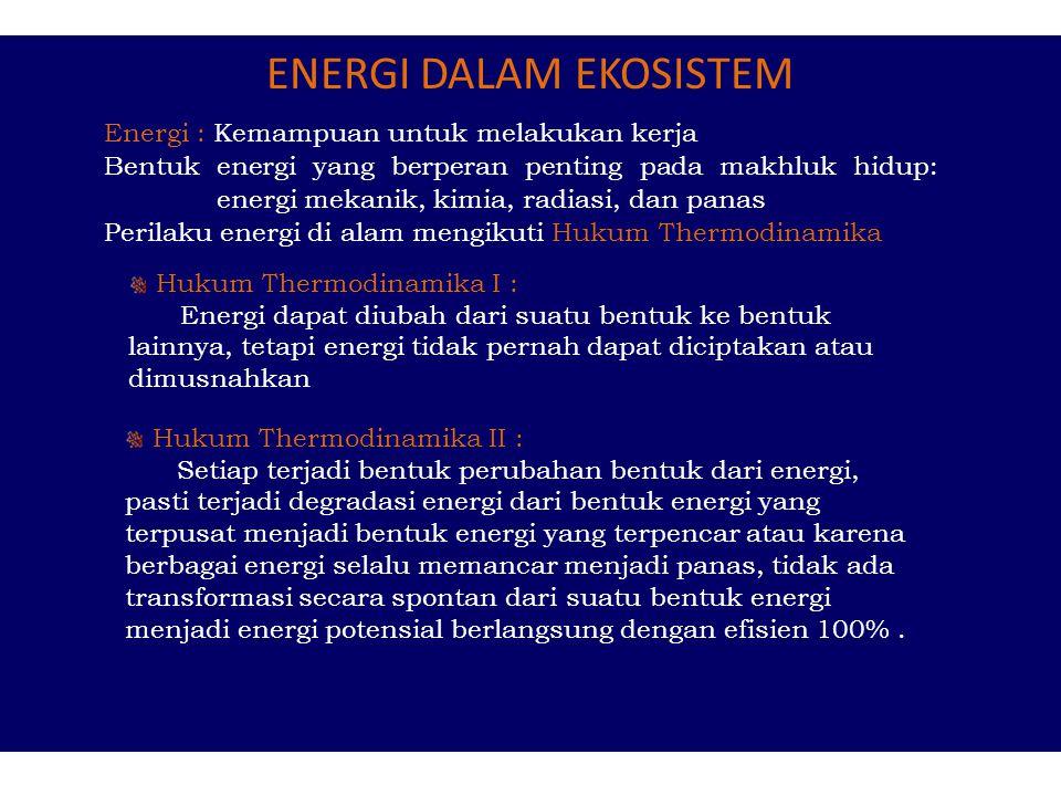 ENERGI DALAM EKOSISTEM