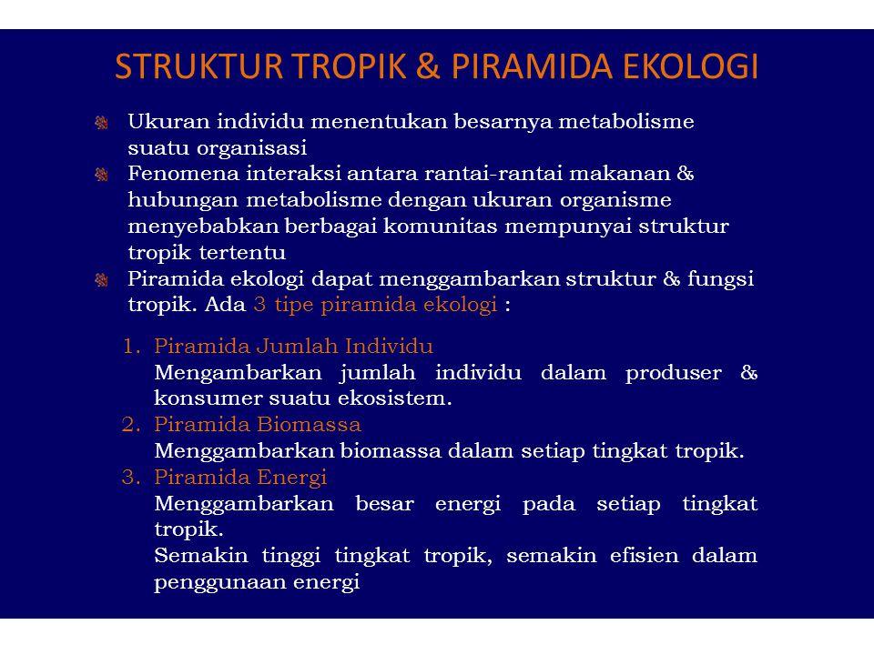 STRUKTUR TROPIK & PIRAMIDA EKOLOGI