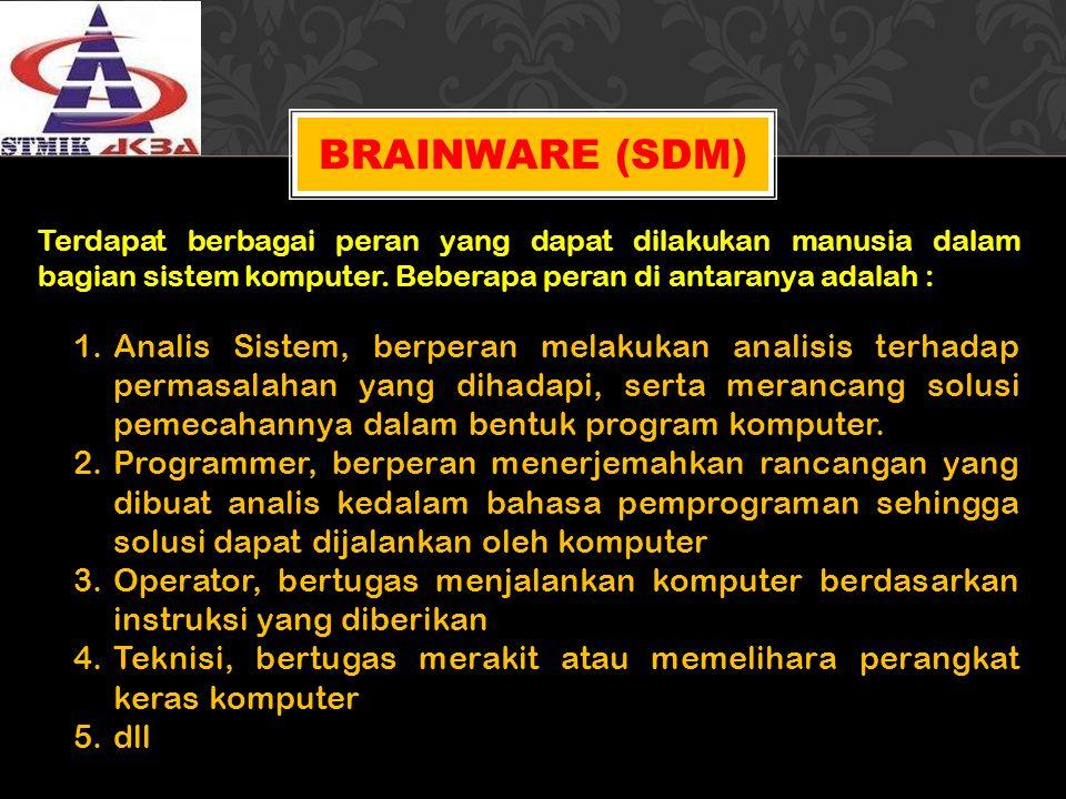 Brainware (SDM) Terdapat berbagai peran yang dapat dilakukan manusia dalam bagian sistem komputer. Beberapa peran di antaranya adalah :