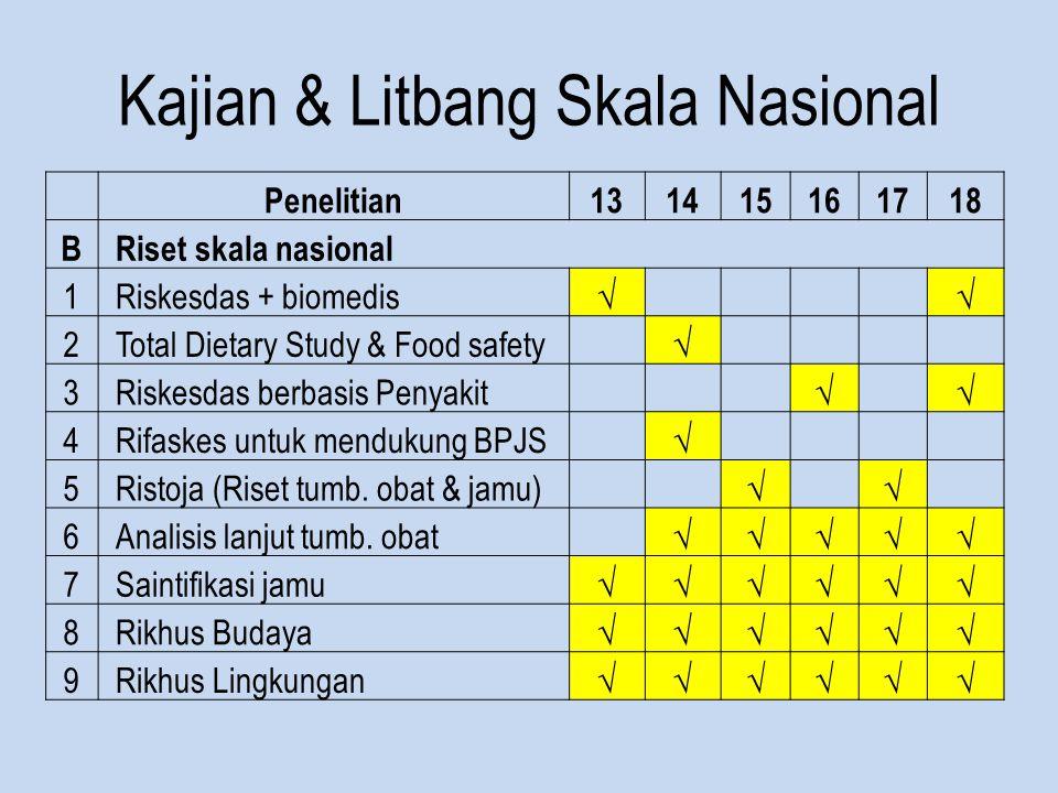 Kajian & Litbang Skala Nasional