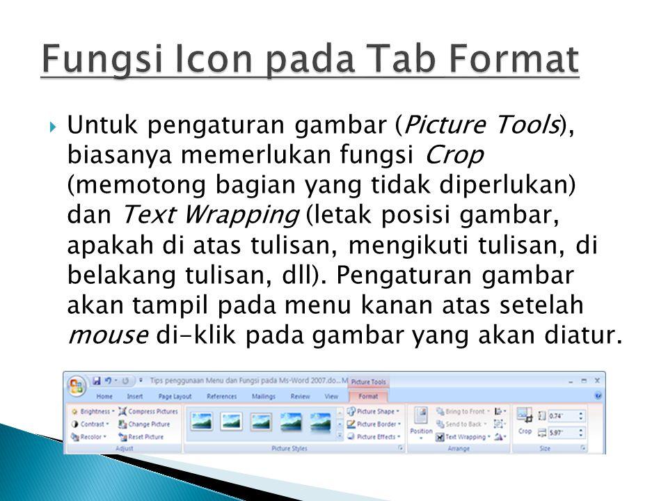 Fungsi Icon pada Tab Format