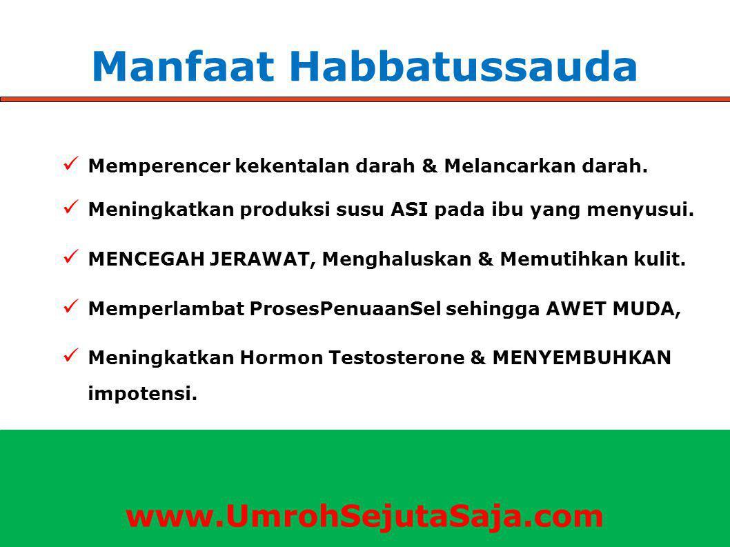 Manfaat Habbatussauda