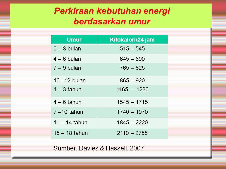 Perkiraan kebutuhan energi