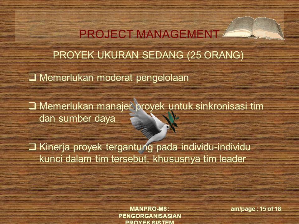 PROYEK UKURAN SEDANG (25 ORANG)