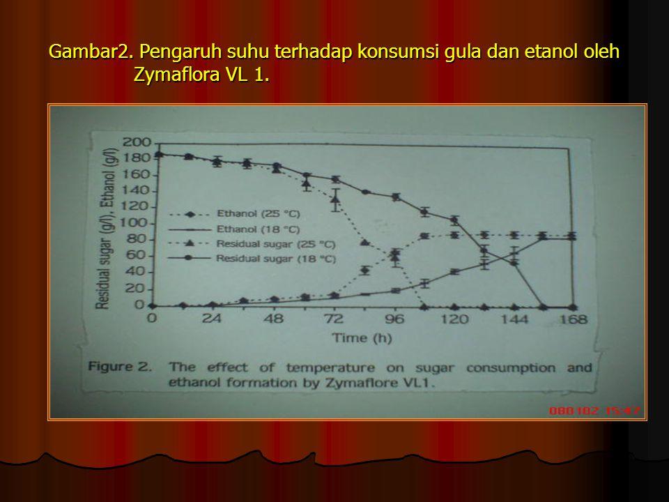 Gambar2. Pengaruh suhu terhadap konsumsi gula dan etanol oleh