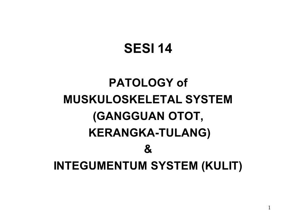 MUSKULOSKELETAL SYSTEM INTEGUMENTUM SYSTEM (KULIT)
