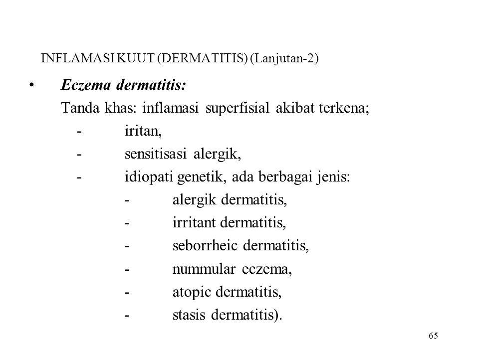 INFLAMASI KUUT (DERMATITIS) (Lanjutan-2)