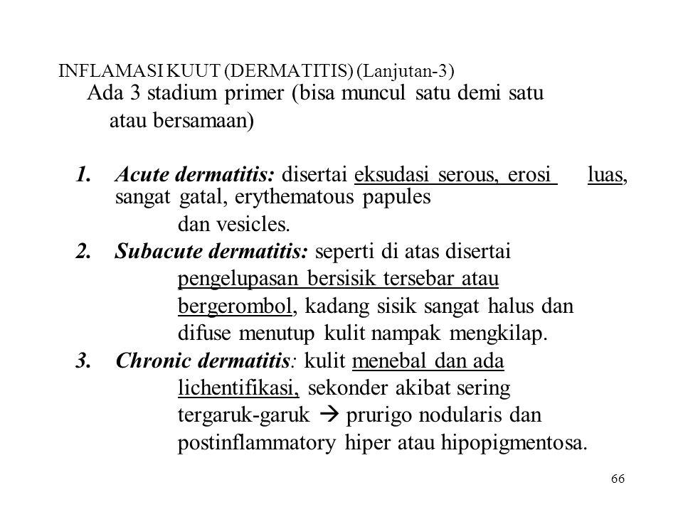 INFLAMASI KUUT (DERMATITIS) (Lanjutan-3)