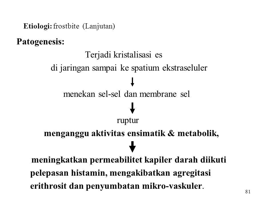 Etiologi: frostbite (Lanjutan)