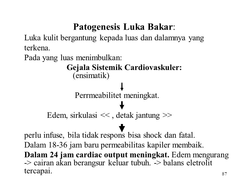 Patogenesis Luka Bakar: