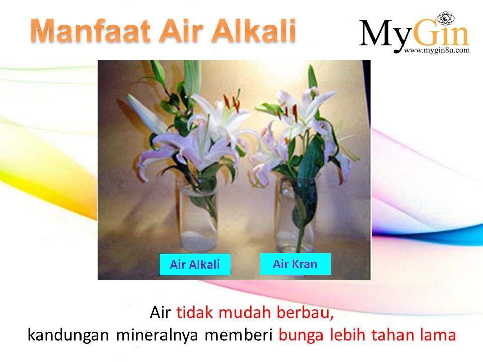 kandungan mineralnya memberi bunga lebih tahan lama