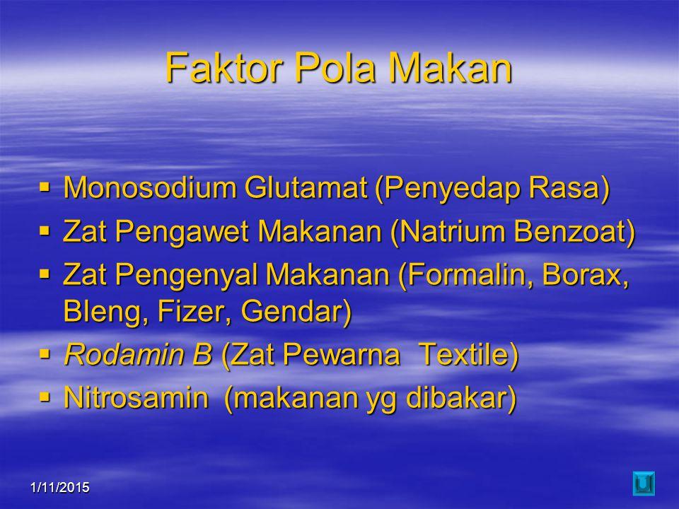 Faktor Pola Makan Monosodium Glutamat (Penyedap Rasa)