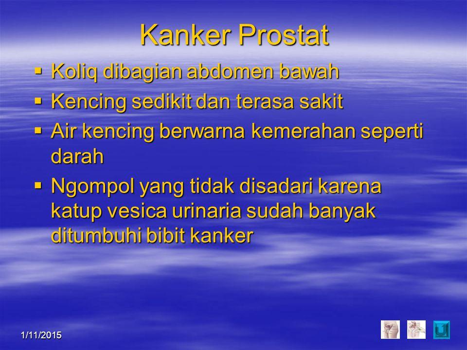 Kanker Prostat Koliq dibagian abdomen bawah