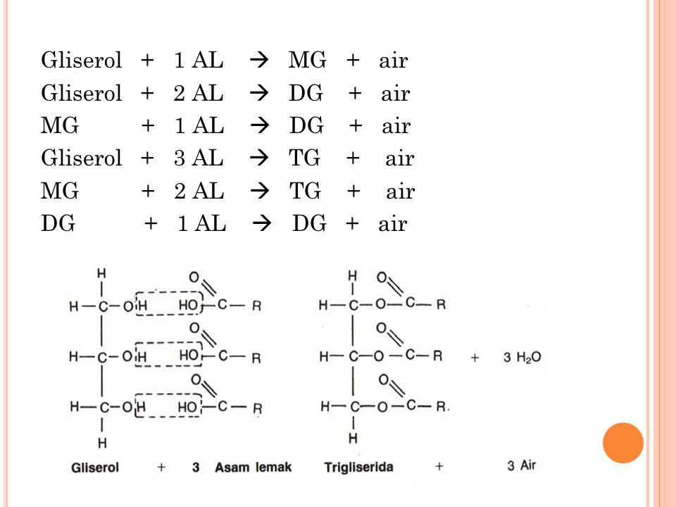 Gliserol + 1 AL  MG + air Gliserol + 2 AL  DG + air MG + 1 AL  DG + air Gliserol + 3 AL  TG + air MG + 2 AL  TG + air DG + 1 AL  DG + air