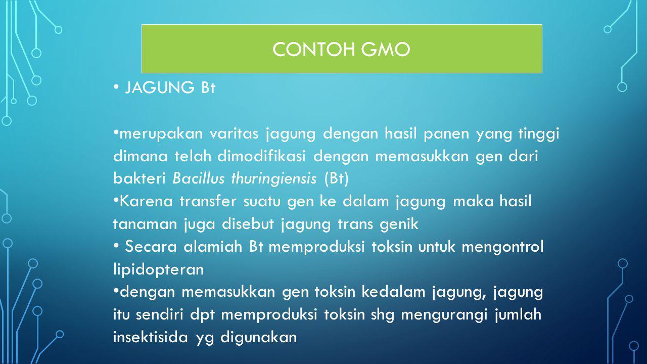 CONTOH GMO JAGUNG Bt. merupakan varitas jagung dengan hasil panen yang tinggi. dimana telah dimodifikasi dengan memasukkan gen dari.