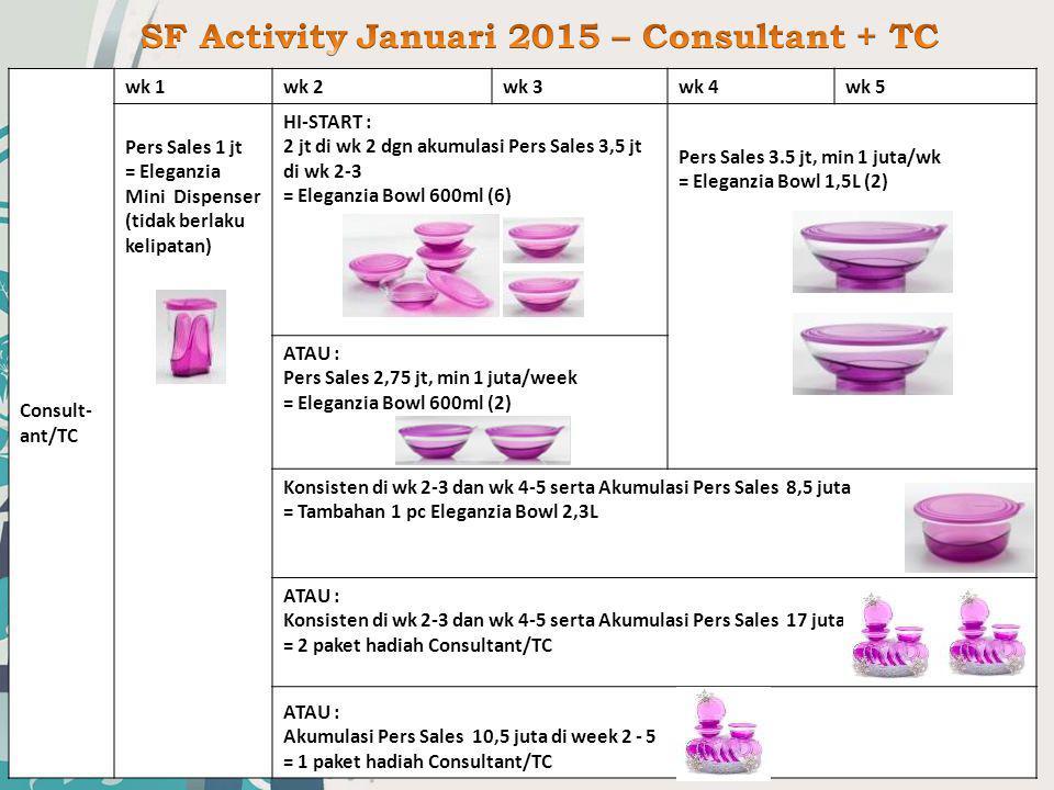 SF Activity Januari 2015 – Consultant + TC