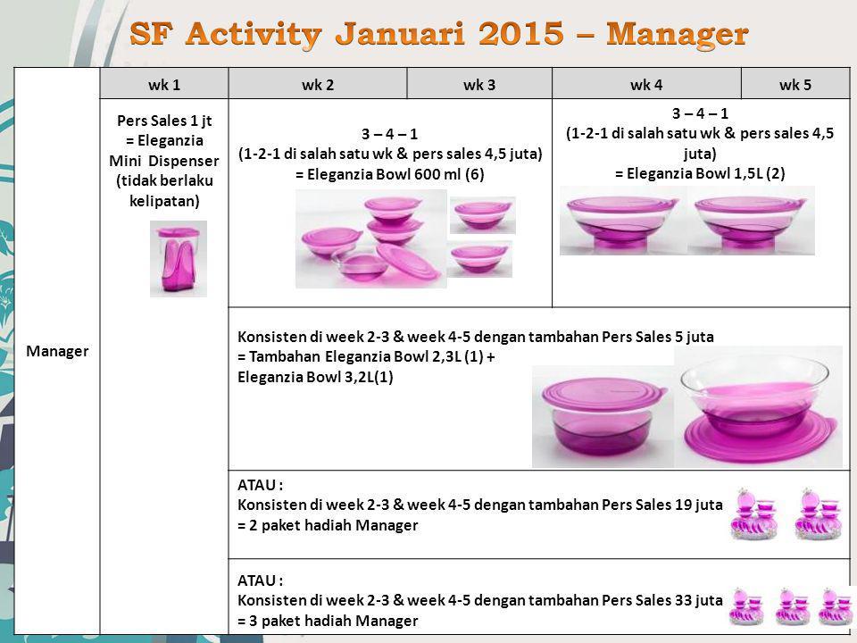 SF Activity Januari 2015 – Manager