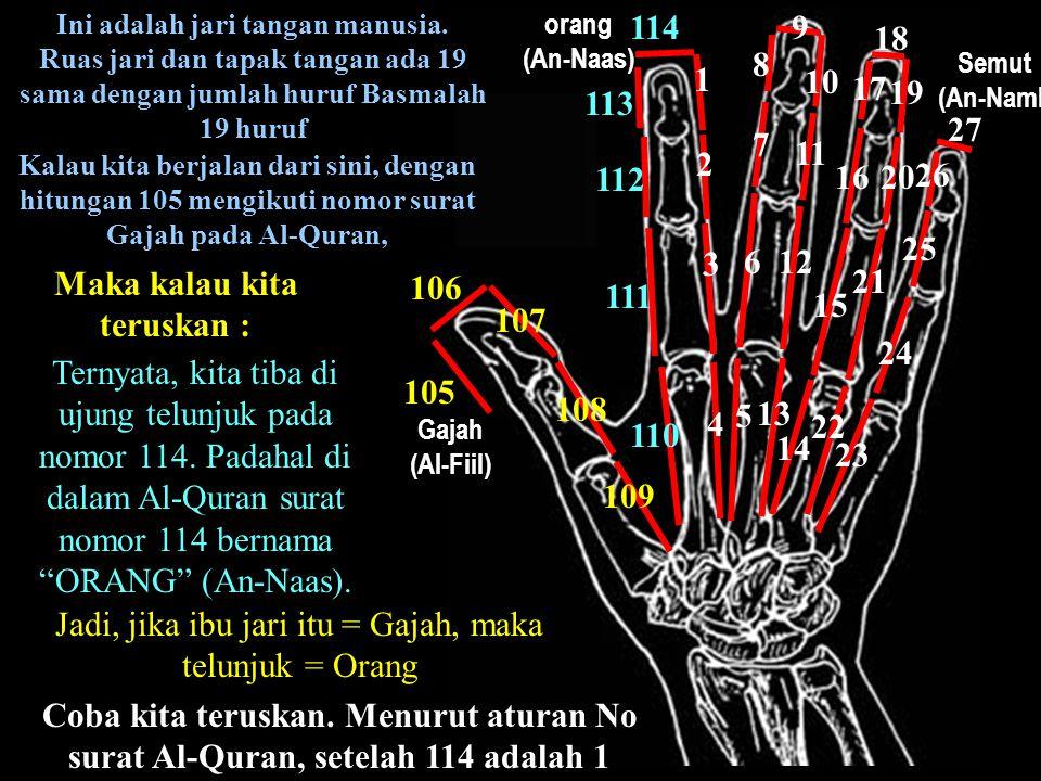 Ini adalah jari tangan manusia. Maka kalau kita teruskan :