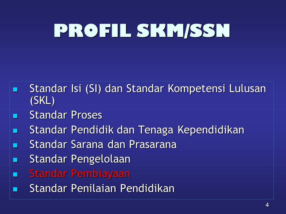 PROFIL SKM/SSN Standar Isi (SI) dan Standar Kompetensi Lulusan (SKL)