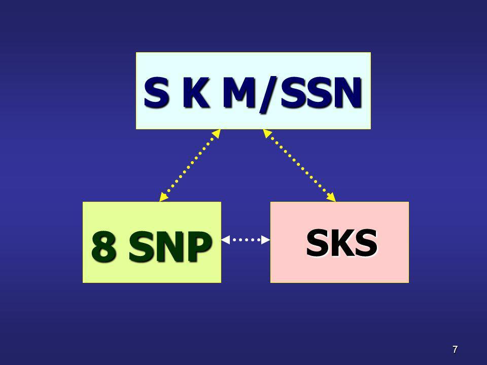 S K M/SSN 8 SNP SKS