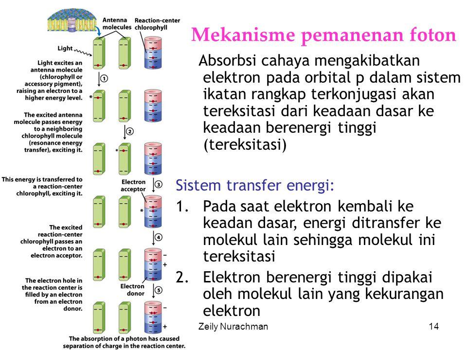 Mekanisme pemanenan foton