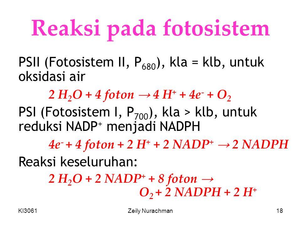 Reaksi pada fotosistem