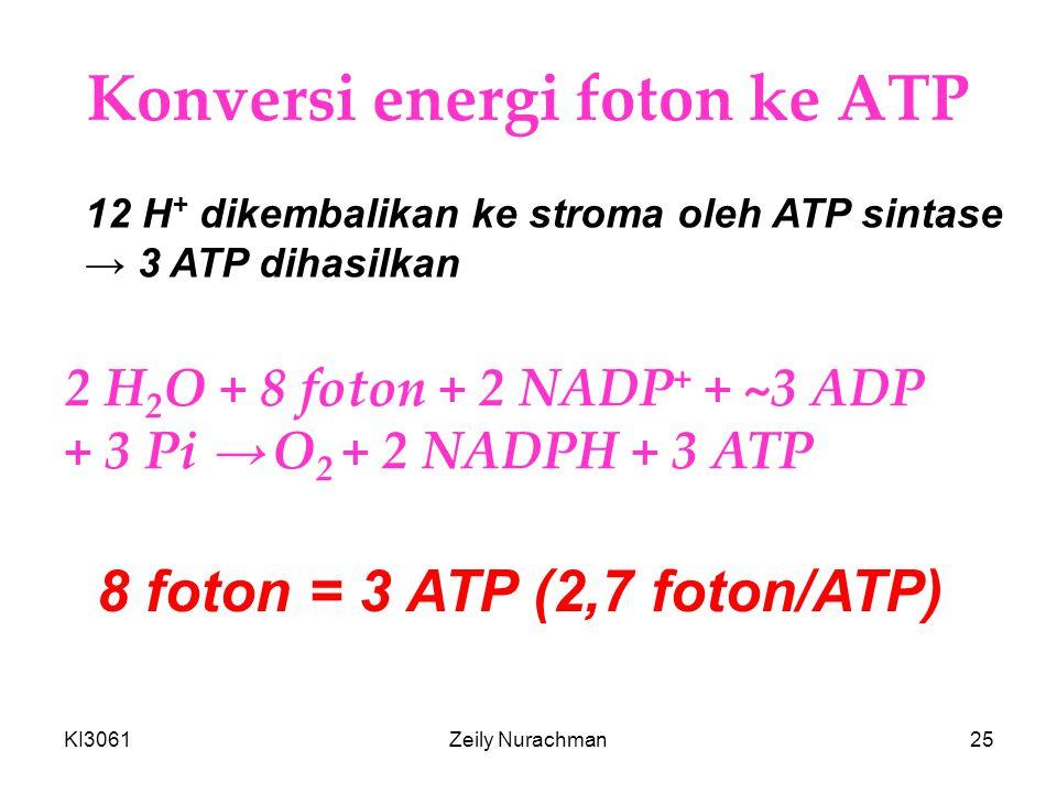 Konversi energi foton ke ATP
