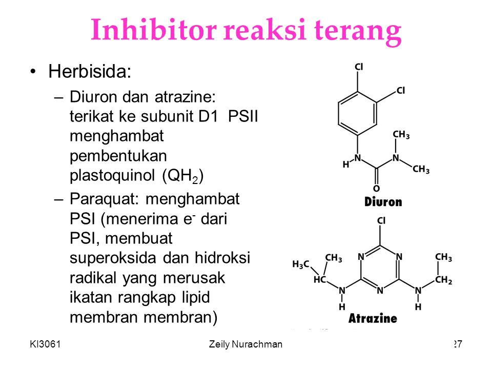 Inhibitor reaksi terang