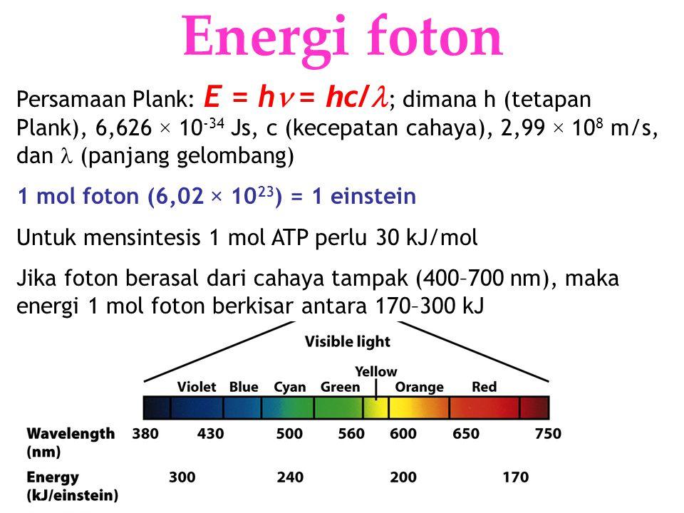 Energi foton