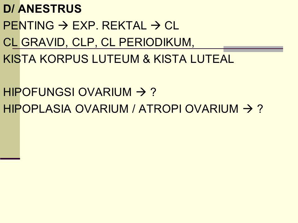 D/ ANESTRUS PENTING  EXP. REKTAL  CL. CL GRAVID, CLP, CL PERIODIKUM, KISTA KORPUS LUTEUM & KISTA LUTEAL.