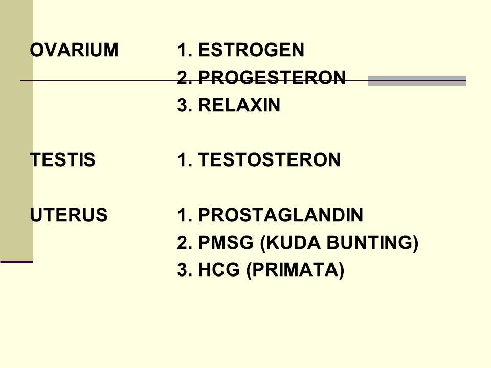 OVARIUM 1. ESTROGEN 2. PROGESTERON. 3. RELAXIN. TESTIS 1. TESTOSTERON. UTERUS 1. PROSTAGLANDIN.