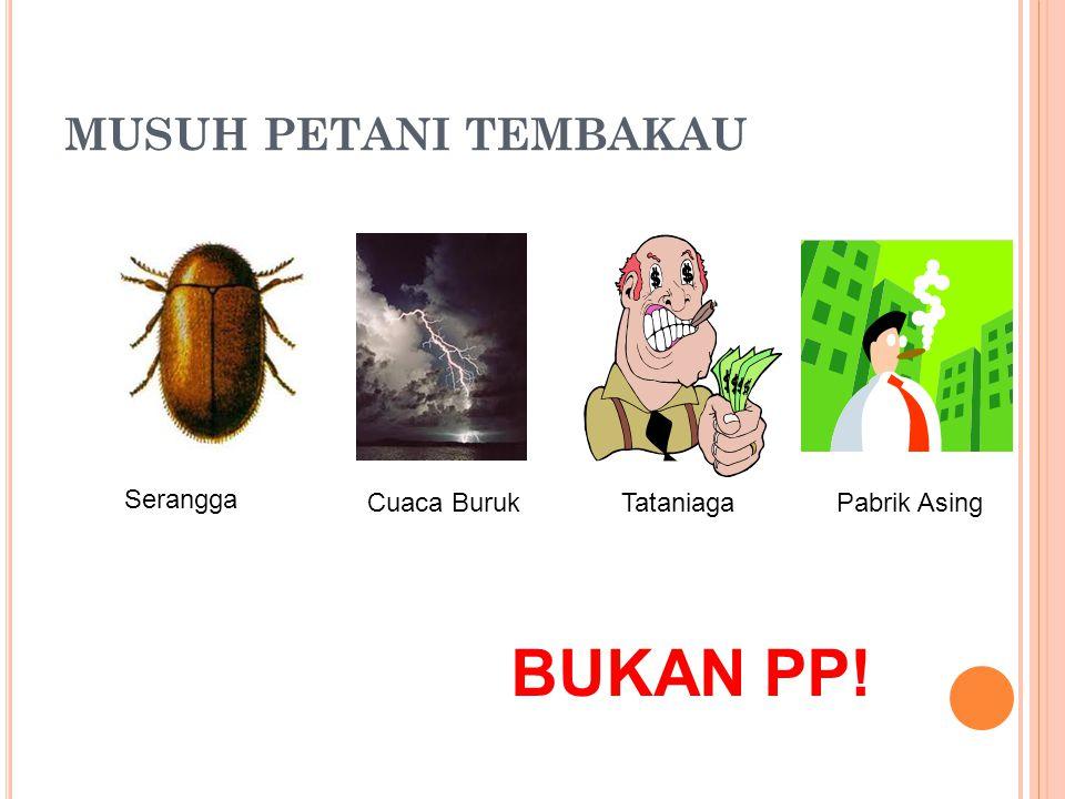 BUKAN PP! MUSUH PETANI TEMBAKAU Serangga Cuaca Buruk Tataniaga